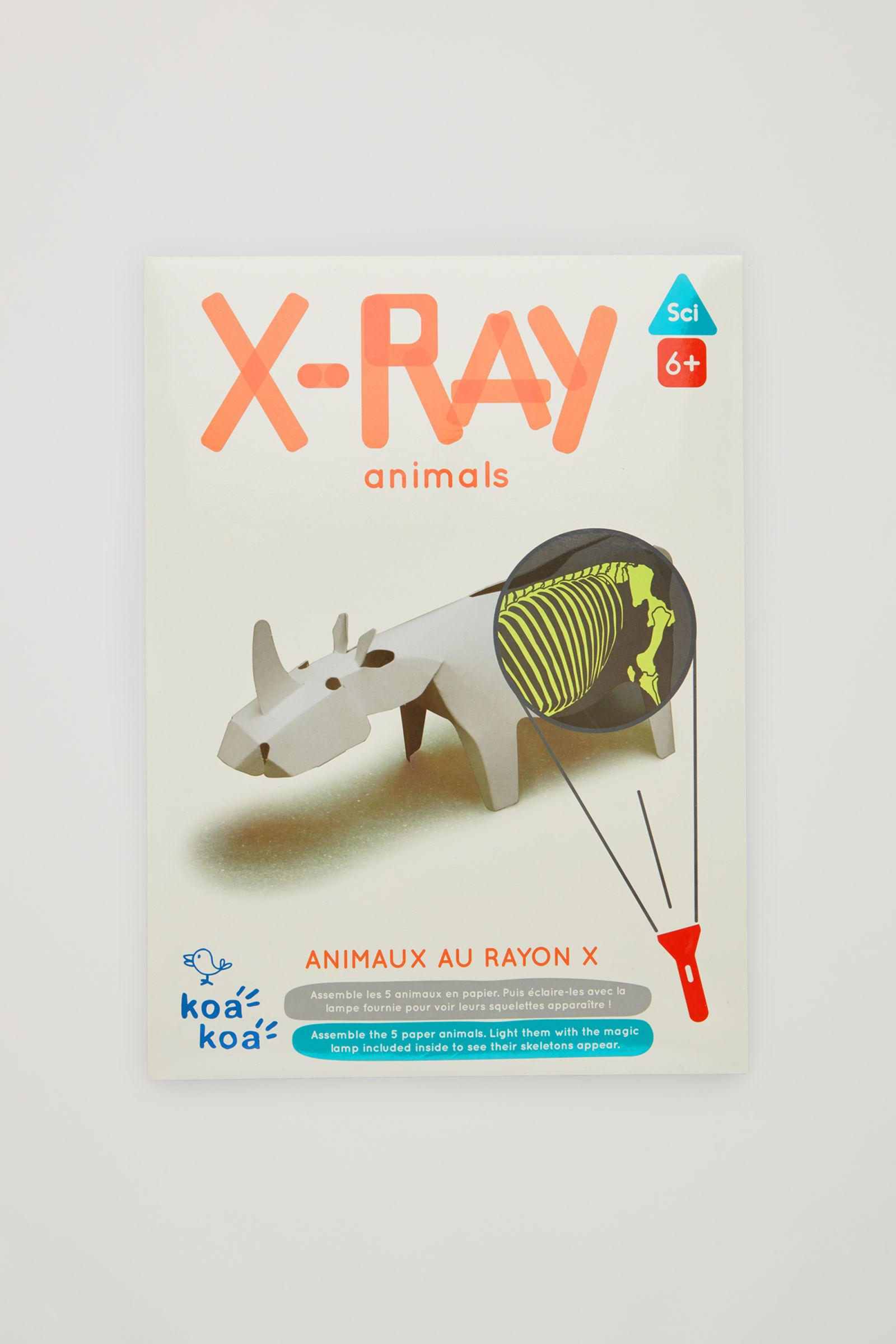 코스 키즈 종이 동물 만들기 책 COS KOA KOA XRAY ANIMALS KIT,white